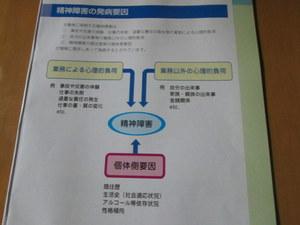 IMG_3288-1.JPG